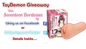 seventeen-bordeaux-giveaway-featured